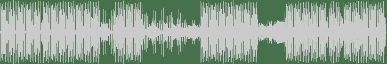 Sasch BBC, Caspar - Do It Right (Original Mix) [Variety Music] Waveform