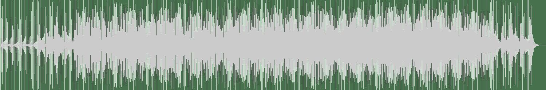 Viks Lander - Into The Night (Original mix) [Computer Love Records] Waveform