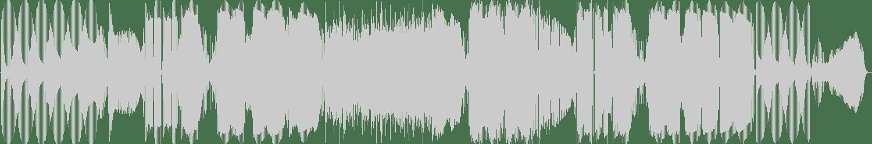 James Kiedis - The Kraken (Original Mix) [Damaged Records] Waveform