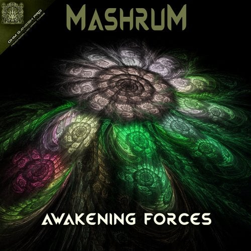 Awakening Forces               Original Mix