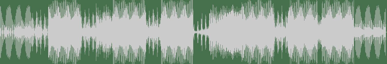 Volkoder - Fools (Original Mix) [Repopulate Mars] Waveform