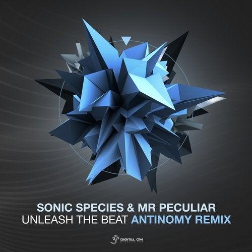 Unleash the Beat