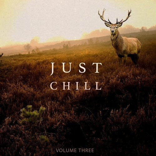Just Chill - Chill Out & Relaxing Music, Vol. 3 (Amazing Chill Out & Ambient Music)