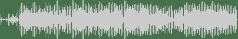 Marian - Passengers (Jesper Ryom Remix) [Freude Am Tanzen Recordings] Waveform