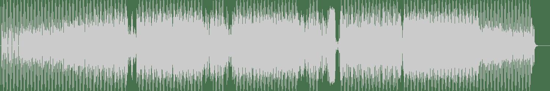 Thomas Brenner, Yuji Tanaka - Shadows (Opolopo Remix) [Toolroom Longplayer] Waveform
