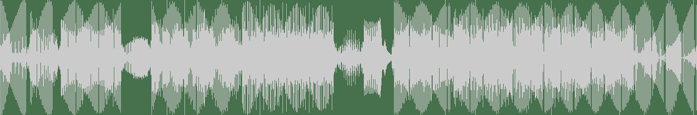 Adrian Hex - Space Drugs (Original Mix) [Audiophile XXL] Waveform