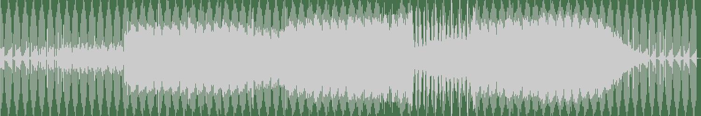 Mr BC - Disco 13 (Original Mix) [Nein Records] Waveform