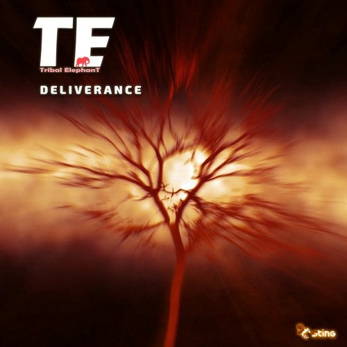 Deliverance               Original Mix