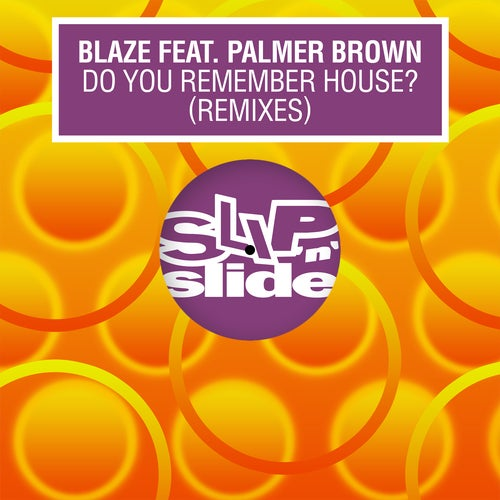 Do You Remember House? feat. Palmer Brown