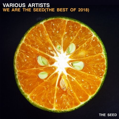 We Are The Seed (the best of 2018)