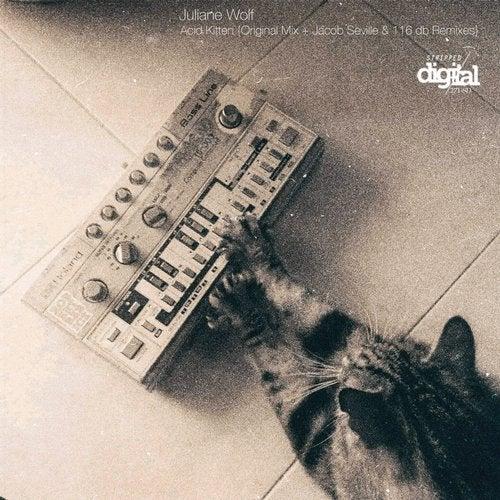 Acid Kitten {Original + Jacob Seville & 116 dB Remixes}
