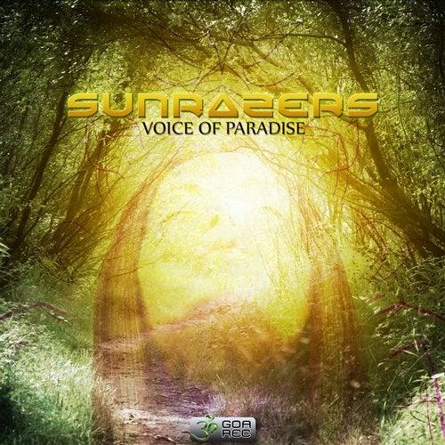 Voice of Paradise               Original Mix