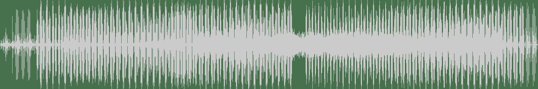 Martin Bellomo, Nicolas Diez - Elemento De Persuasion N1 (Original Mix) [Pleasurex Records] Waveform