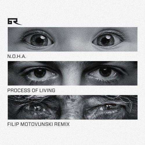 Process of Living