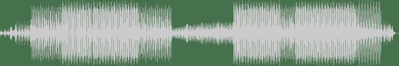 Sokoloff - Another World (Original Mix) [Spring Tube] Waveform