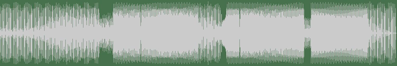 Sebastian Fleischer - Smashing (Original Mix) [High Pro-File Recordings] Waveform