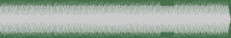 Aleja Sanchez - La Force (Takaaki Itoh Remix) [Nachtstrom Schallplatten] Waveform