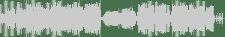 Sidney Charles - Fnk Hrd (Extended Mix) [Saved Records] Waveform