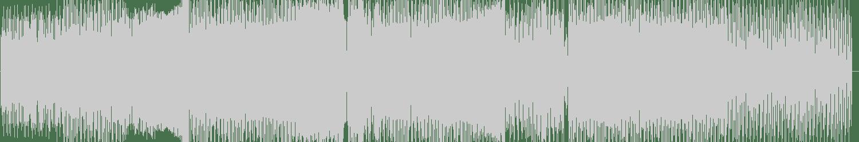Idiot Boyz - Strange Massacre (Paul Anthony & ZXX Remix) [Sick Slaughterhouse] Waveform