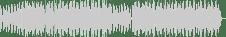 Kalamak - Like Your Fear (Original Mix) [Acidsamovar Records] Waveform