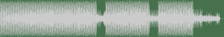 Damon Vallero - Drive Setting (Hiroaki Iizuka Remix) [Electracom] Waveform