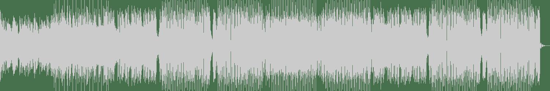 Bianca, Bonka - Focus (Sammy Boyle Edit) (Original Mix) [Robbins Entertainment] Waveform