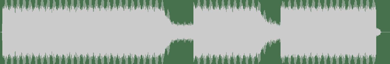 Gotshell - Enigma (Original Mix) [Nachtstrom Schallplatten] Waveform