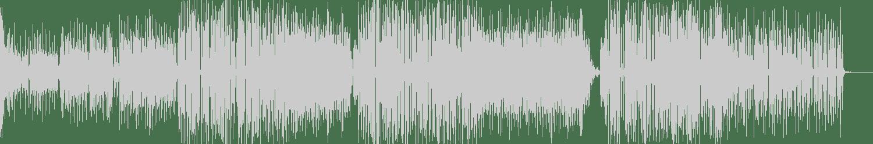 Some Dude, Teriyaki Noize - Haus (Original Mix) [MMXVAC] Waveform