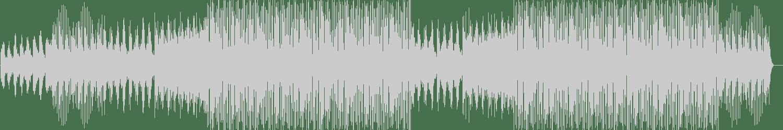 Houbass - Half Pulse (Promenade remix) [BNC Express] Waveform