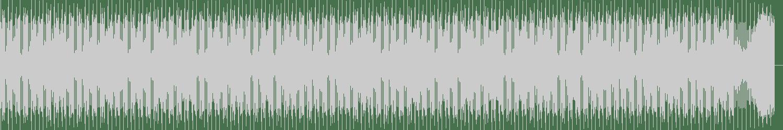 9th Wonder - Star Star Bass (Original Mix) [Jamla Records] Waveform