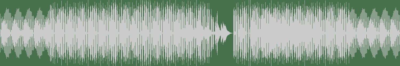 FISHER (OZ) - Ya Kidding (Sébastien V (BE) Remix) [DIRTYBIRD] Waveform