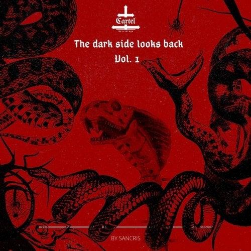 THE DARK SIDE LOOKS BACK - Vol. 1