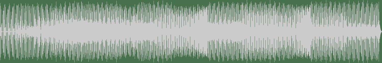 DJ Zoli - The Only One (Vocal Mix) [Houzier] Waveform