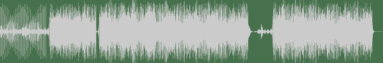 A-Negative and SoundNbeats - Nine (Original Mix) [In Da Jungle Recordings] Waveform