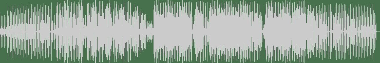 Andre Salmon, Jaime Mayer - Acidum (Original Mix) [Anima Somnis (DMG)] Waveform