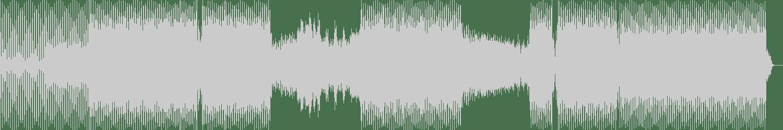 Black Acid - Cibeles (Original Mix) [Natura Viva Black] Waveform