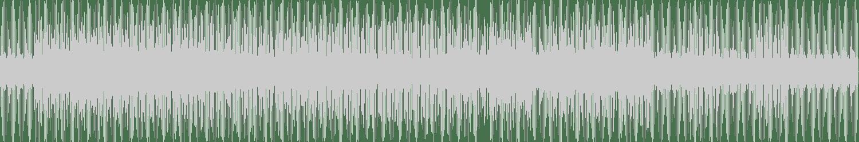 Mr. Fingers - Nodyahed (Original Mix) [Alleviated Records] Waveform
