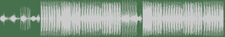 Love The Cook - Corrupt (The Next Remix) [Tsunami Audio] Waveform