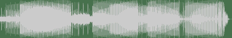 Niko, JBZ, Sound Guy - Jam Test (Original Mix) [Future Culture Records] Waveform