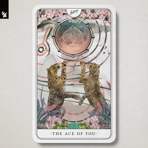 The Ace Of You - Extended Versions