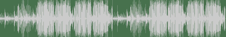 Syanide - Deadly Technique (Original Mix) [Dirty Latvian Recordings] Waveform