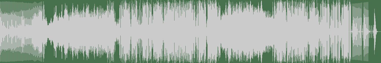 The H2O Project - Celeron (Original Mix) [Braslive Records] Waveform