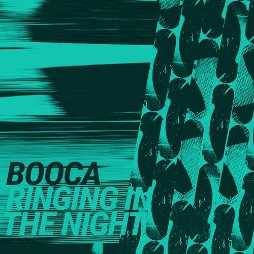 Ringing In The Night