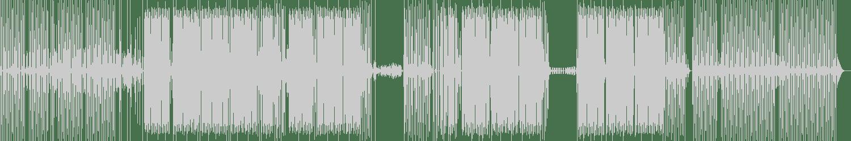 Techno Animals - Domino (Original Mix) [TechNut Records] Waveform
