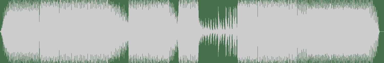 Skillshuut - Dark Cubes (432 Hertz Mix) [Bikini Sounds Rec.] Waveform