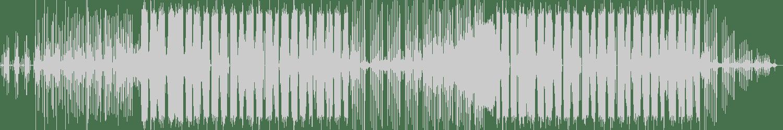 Joe Ford - Immobilise (Original Mix) [Inspected Records ] Waveform