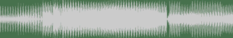 Flow - I Didn't Go (Original Mix) [Low Pressings] Waveform
