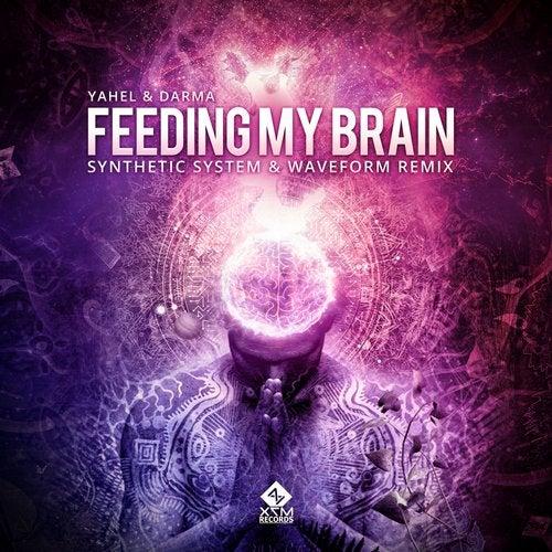 Feeding My Brain