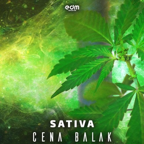 Sativa               Original Mix