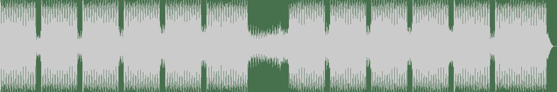 Richard Cleber - Jalma (Original Mix) [Analogue Audio] Waveform
